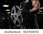brutal strong athletic men... | Shutterstock . vector #561920053