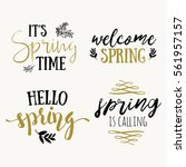 it's spring time lettering... | Shutterstock .eps vector #561957157
