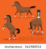 horse arabian cartoon vector...   Shutterstock .eps vector #561980923