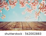 top of wood table with pink... | Shutterstock . vector #562002883