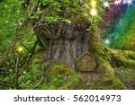 Ancient Tree In Forest With...