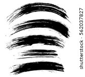 black ink vector brush strokes... | Shutterstock .eps vector #562037827