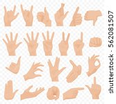 realistic human hands icons and ... | Shutterstock .eps vector #562081507