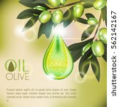 olive shining oil serum essence ... | Shutterstock .eps vector #562142167