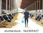Agriculture Industry  Farming ...
