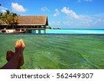 luxury relax in a resort in... | Shutterstock . vector #562449307