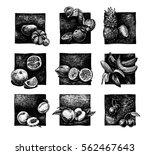 vector ink hand drawn set of... | Shutterstock .eps vector #562467643