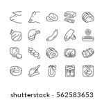 types of pork and meat products ... | Shutterstock .eps vector #562583653