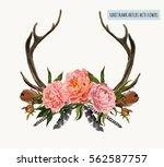 beautiful vector illustration... | Shutterstock .eps vector #562587757