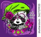 vector raccoon with beret and... | Shutterstock .eps vector #562729933