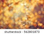 abstract background autumn... | Shutterstock . vector #562801873