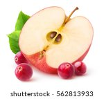 isolated apple and cranberries. ... | Shutterstock . vector #562813933