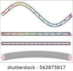 optical fibers   the light ray... | Shutterstock .eps vector #562875817