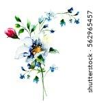 original summer flowers ... | Shutterstock . vector #562965457