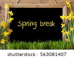 Small photo of Flower Narcissus, Chalkboard, Text Spring Break