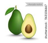 avocado and slice vector...   Shutterstock .eps vector #563106667