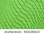 Green Snake Scales Macro...