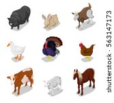 isometric farm animals set with ... | Shutterstock .eps vector #563147173