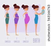 stages of pregnancy  changing...   Shutterstock .eps vector #563166763