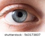 Blue Iris Eye. Macro Shot.