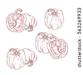 ink hand drawn peppers on white ... | Shutterstock . vector #563269933