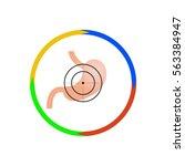 vector illustration. stomach at ... | Shutterstock .eps vector #563384947
