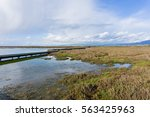 Salt Ponds And Marshes  Don...