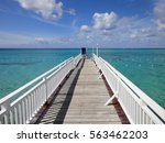 wooden bridge walkway in... | Shutterstock . vector #563462203