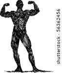 sketch bodybuilder | Shutterstock .eps vector #56362456
