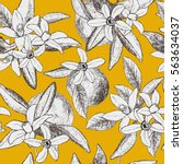 seamless pattern of isolated... | Shutterstock .eps vector #563634037
