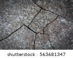 old wooden surface textures.... | Shutterstock . vector #563681347