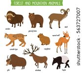 forest and mountain animals set ... | Shutterstock .eps vector #563727007