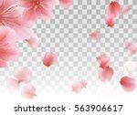 pink sakura petals flying.... | Shutterstock .eps vector #563906617
