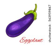 eggplant vegetable icon. sketch ... | Shutterstock .eps vector #563959867