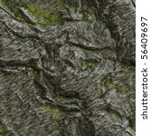 Seamless Texture Of A Lichen...