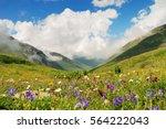 alpine meadows in the caucasus... | Shutterstock . vector #564222043