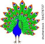 peacock | Shutterstock .eps vector #564278737
