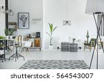 white and spacious... | Shutterstock . vector #564543007