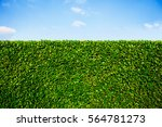 wall ornamental of fence with a ... | Shutterstock . vector #564781273
