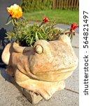 Flower Pot  Frog Shape