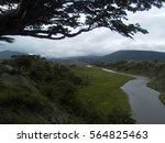 Forest River Landscape
