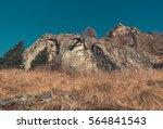 mountain rocks and vegetation... | Shutterstock . vector #564841543