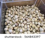 Small photo of Top view of candlenuts in a box storage. Candlenut or Aleurites moluccanus is a very healthy food known to be an organic supplement fpr various health purposes.