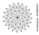 graphic mandala with abstract... | Shutterstock .eps vector #564884017