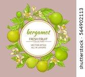 bergamot vector frame | Shutterstock .eps vector #564902113