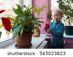 Child Watering Flowers With Re...