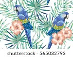 blue macaw parrots with mint... | Shutterstock .eps vector #565032793