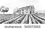 vintage engraved  hand drawn... | Shutterstock .eps vector #565072003