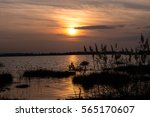 sunset on lake  | Shutterstock . vector #565170607