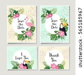 cards with tropical leaves ... | Shutterstock .eps vector #565185967